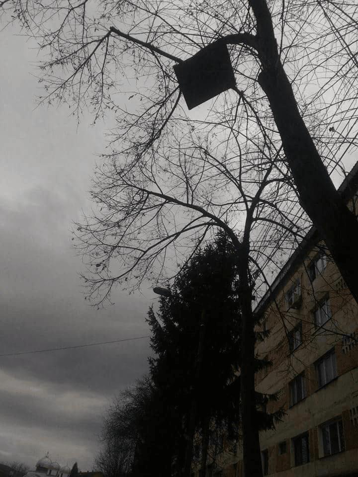 vant-puternic-ravagii-acoperis-tabla-pomi (10)