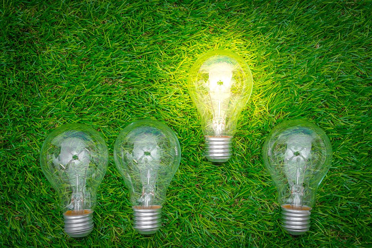 energie electrica,bec, plafonarea preturi
